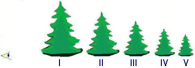 Obr. 2. Zraková perspektiva