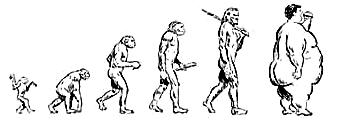 evoluce-cloveka