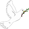 holubice-miru